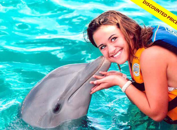 Dolphin Encounter at Isla Mujeres