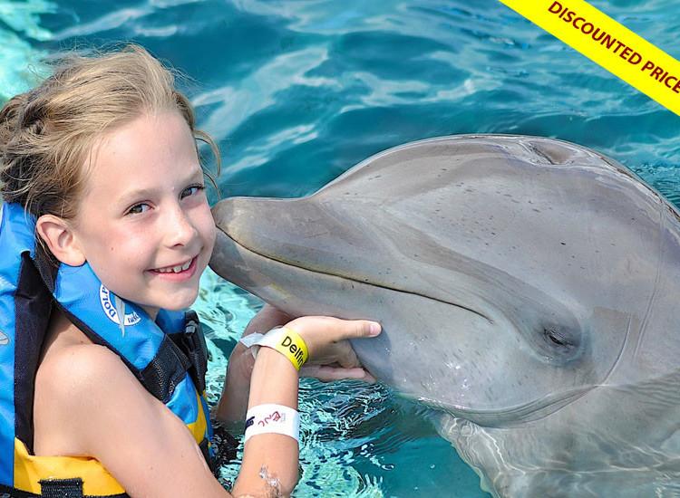 Dolphin Encounter at Cozumel Mexico