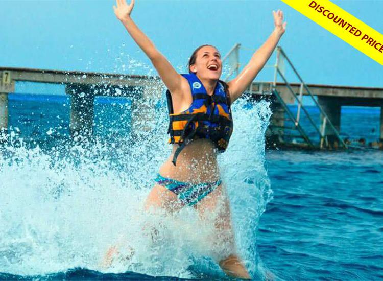 Dolphin Royal Swim VIP at Isla Mujeres